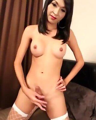 Busty thai tranny in fishnet stockings teasing